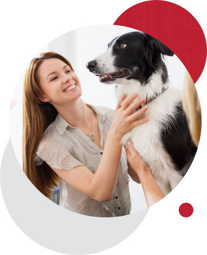 Dog care expert with dog in circles